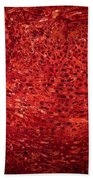 Detail Polished Red Coral Beach Towel