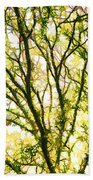 Detailed Tree Branches 1 Beach Towel