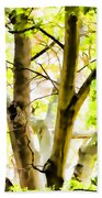 Detailed Tree Branches 2 Beach Towel