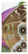 Detailed Wings Beach Towel