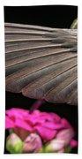 Details Of The Hummingbird Wing Beach Towel