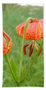 Dew Covered Tiger Lilies Beach Towel
