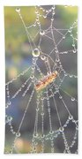 Dew Drops On A Spider Web Beach Towel