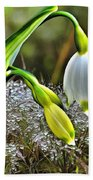 Dew On Lilly Of The Valley Beach Towel