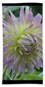 Dewy Dahlia Beach Towel
