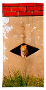 Diamond Kitty Beach Towel
