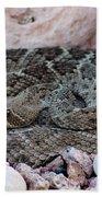 Diamondback Rattlesnake 062414a Beach Towel