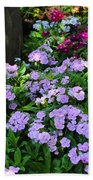 Dianthus Flower Bed Beach Towel