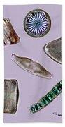 Diatoms Beach Towel