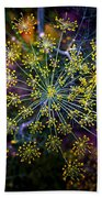 Dill Going To Seed Beach Towel