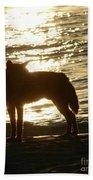 Dingo Sunset Beach Towel