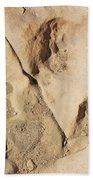 Dino Tracks In The Desert 3 Beach Sheet