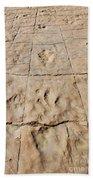 Dino Tracks In The Desert 4 Beach Sheet