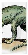 Dinosaur: Allosaurus Beach Towel