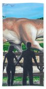 Dinosaur Country Beach Towel