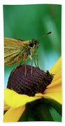 Dion On A Brown Eyed Susan Beach Towel