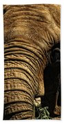 Disappearing Elephant Beach Towel