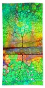 Disappearing In Colour Beach Towel