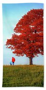 Discovering Autumn Beach Towel