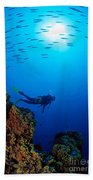 Diving Scene Beach Towel