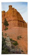 Dixie National Forest Beach Towel