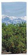Dm6850-e Orange Grove And The Sierra Nevada Ca Beach Towel