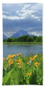 Dm9235 Mt. Moran From Oxbow Bend Beach Towel