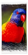 Do-00153 Colourful Lorikeet Beach Towel