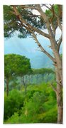 Do-00301 Pine Trees Forest In Aaraya Beach Towel