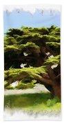 Do-00319 Cedar Tree Beach Towel