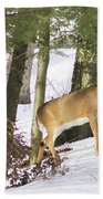 Doe Emerges Beach Towel