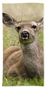 Doe Eyes Beach Towel
