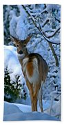 Doe In The Snow In Spokane 2 Beach Towel