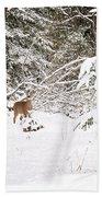 Doe In Winter Snow  Beach Towel