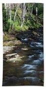 Doe River In April Beach Towel