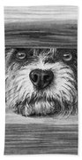 Dog At Gate Beach Towel