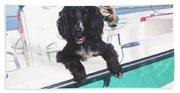 Dog Happy Birthday Card Beach Towel