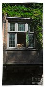 Dog In A Window Above The Canal In Bruges Belgium Beach Towel