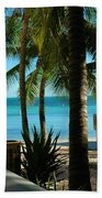 Dog's Beach Key West Fl Beach Towel