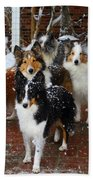 Dogs During Snowmageddon Beach Towel