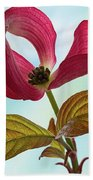 Dogwood Ballet 4 Beach Towel
