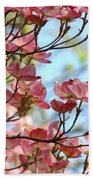 Dogwood Flowering Trees Pink Dogwood Flowers Baslee Troutman Beach Towel
