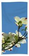 Dogwood Flowers Art Prints White Flowering Dogwood Tree Baslee Troutman Beach Towel