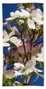 Dogwood Sky Beach Towel