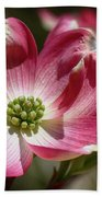 Dogwood Spring Beach Towel
