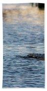Dolphin By The Dock Beach Towel