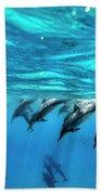 Dolphin Dive Beach Towel by Sean Davey