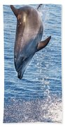 Dolphin Jump Beach Towel