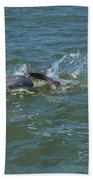Dolphin Race Beach Towel