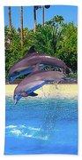 Dolphins Dance Beach Towel